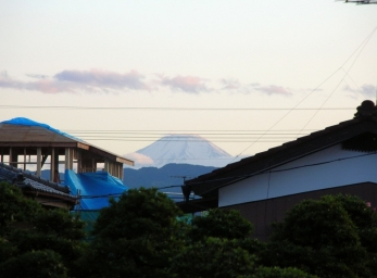 Mt. Fuji (view out back)